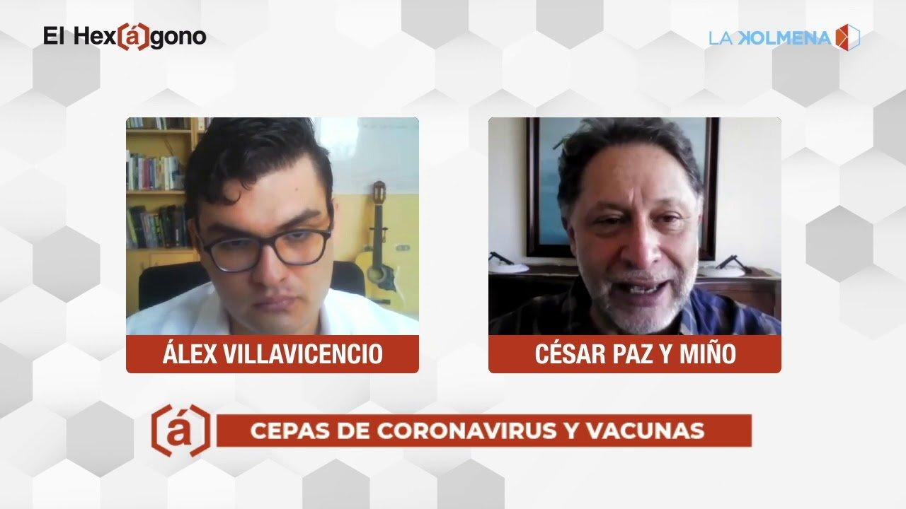 Cepas de coronavirus y vacunas