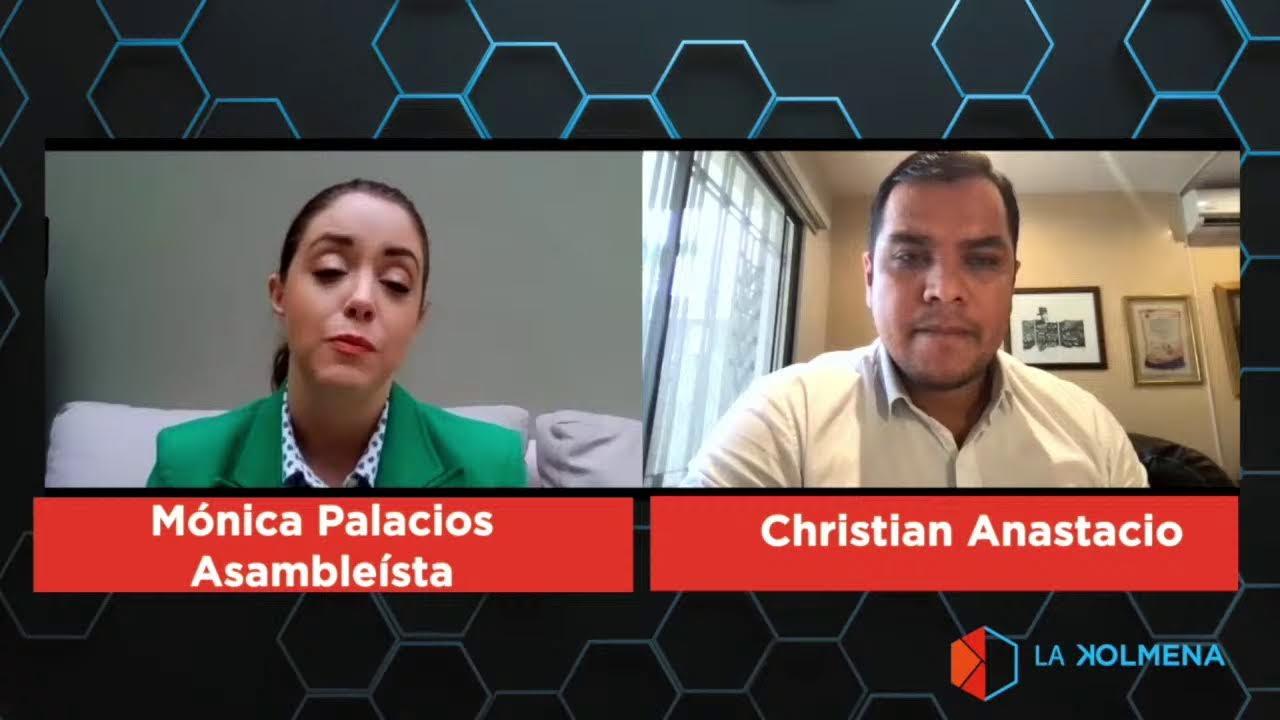 Al Sur del Panal: Asambleísta Mónica Palacios