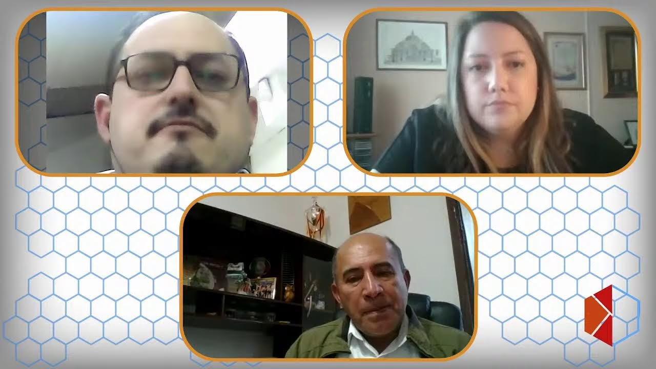 Al Sur del Panal: Régimen Alternativo y Voluntario de Oportunidades Laborales.
